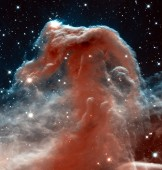 The-Horse-Head-Nebula.jpg